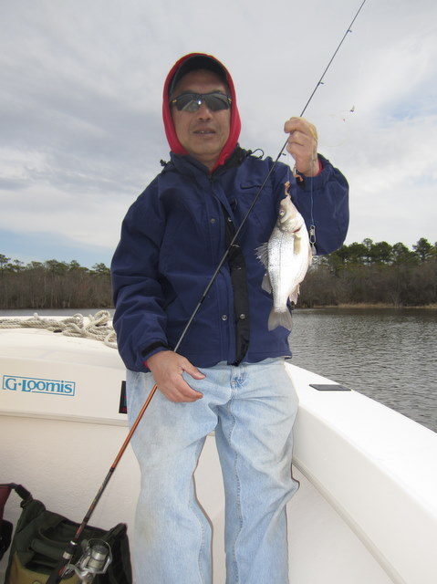 March 2011 josenhans fly fishing blog for Choptank river fishing report