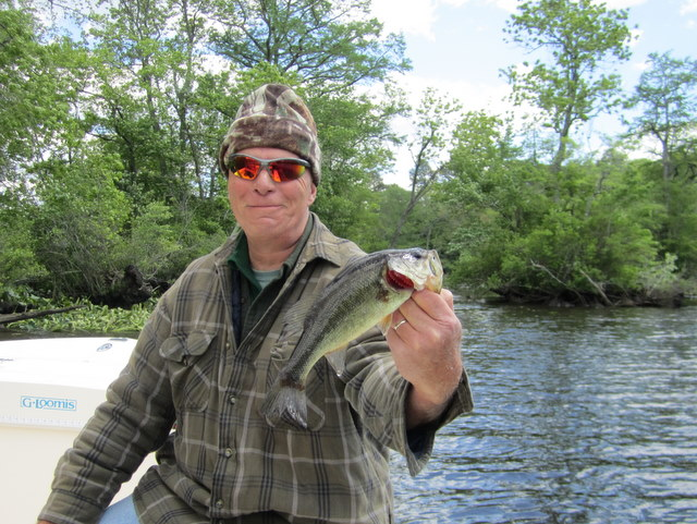 White perch josenhans fly fishing blog page 2 for Choptank river fishing report
