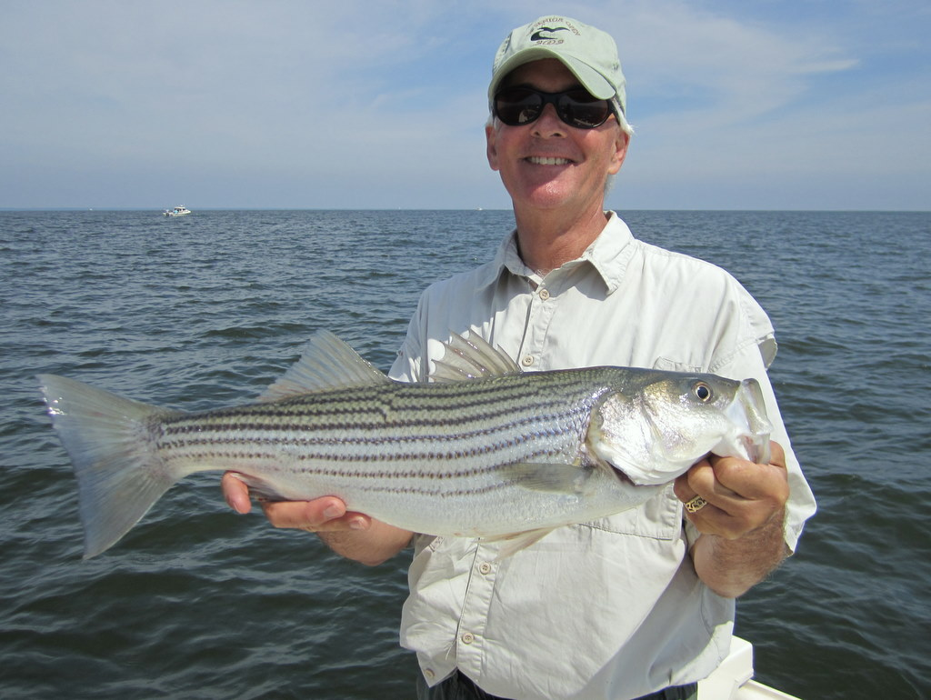 July 2011 josenhans fly fishing blog for Choptank river fishing report