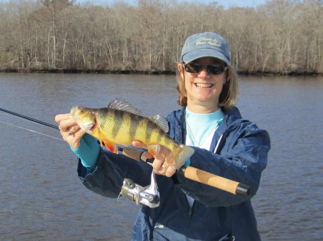 January 2012 josenhans fly fishing blog for Trout fishing maryland