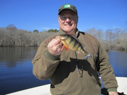 Scott Evander adds a colorful perch to the box