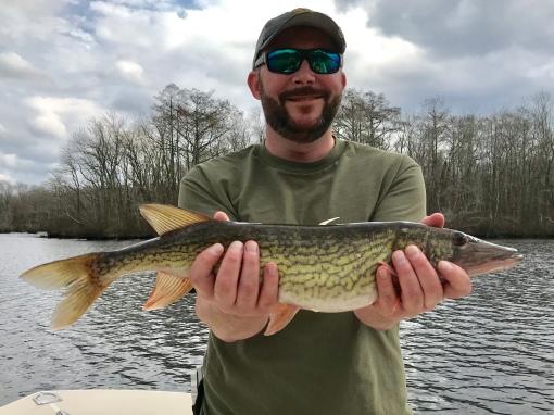 Josenhans Fly Fishing Blog Chesapeake Bay Fly And Light